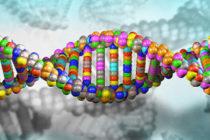 familiarità-malattie-genetiche01