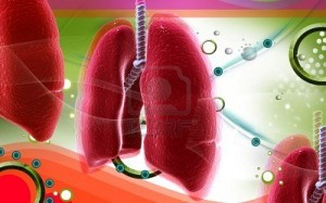 8683010-digital-illustration-of-human-lungs-in-colour-background-300x187.jpg