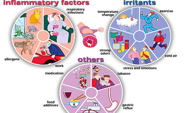 asthma-triggers-01.jpg