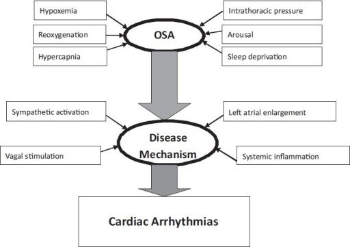 OSA-and-cardiac-arrhythmias.png