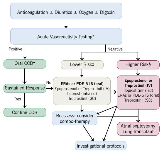 Terapia ipertensione polmonare - Le Malattie dell'Apparato..