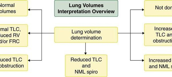 pulmonary-function-fig9_large.jpg