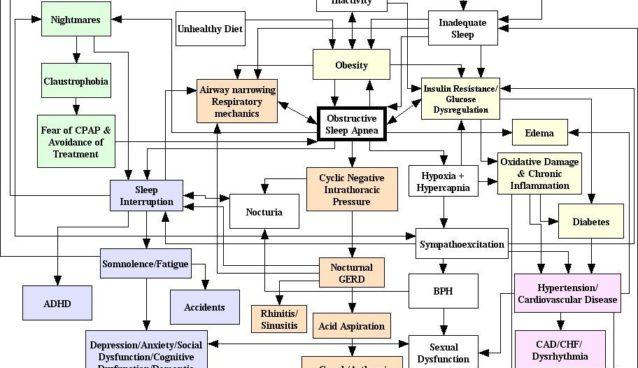 osa_pathophysiology.jpg