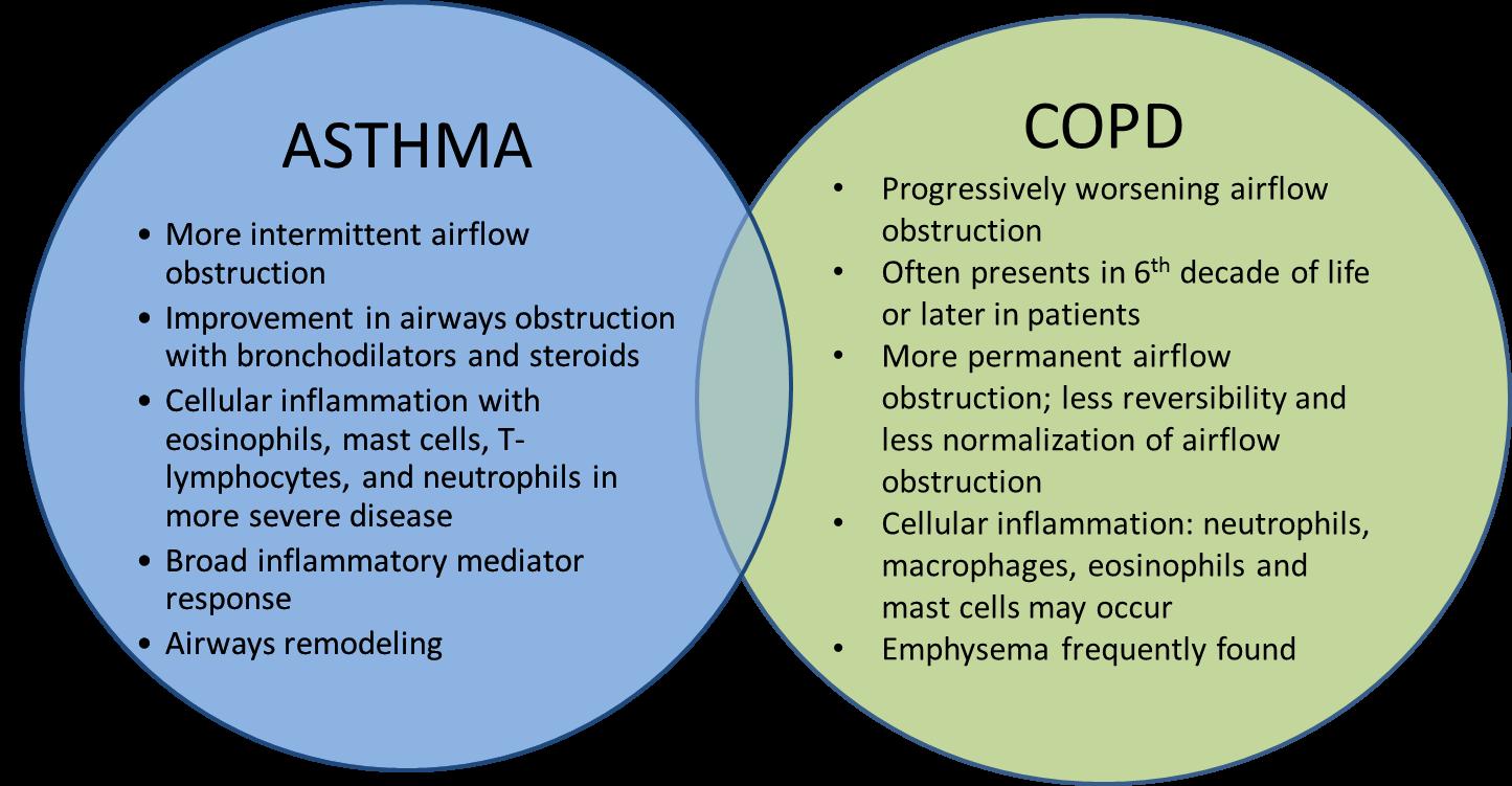 Asma e broncopatia cronica - Le Malattie dell'Apparato ...
