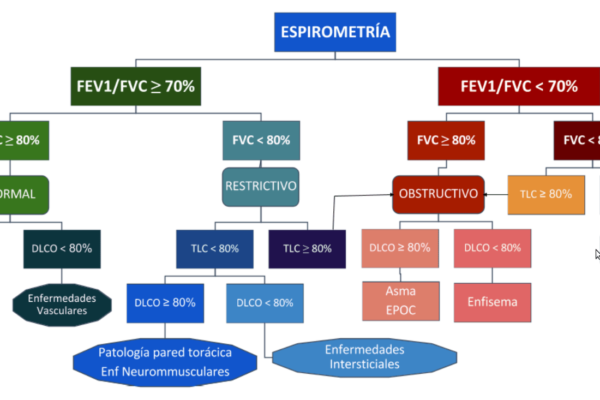 Spirometria 1