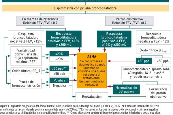 Spirometria 3