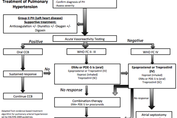Algorithm_for_treatment_of_pulmonary_HTN1.png