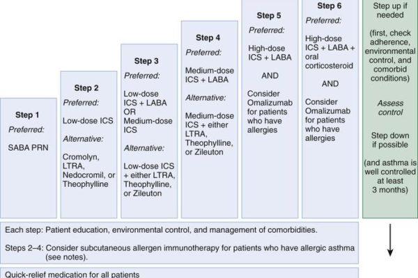 bronchial-asthmafig7_large.jpg
