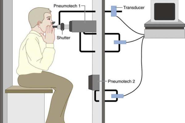 pulmonary-function-fig5_large1.jpg